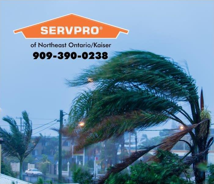 Strong Santa Ana winds are shown blowing through palm trees in an urban area of Southern California.